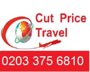 logo cutpricetravel 1 300x241