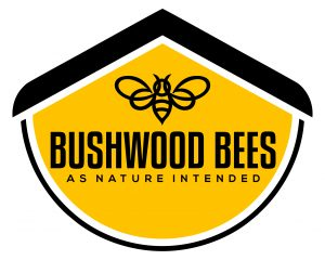 Bushwood Bees Logo 300x240